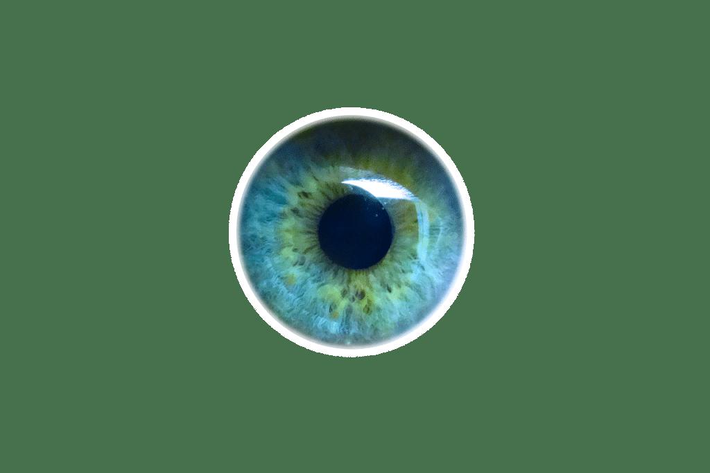 iridologie